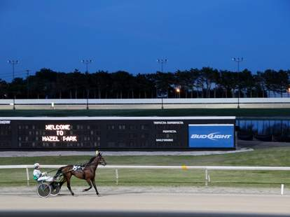 A horse on the track at the Hazel Park Raceway