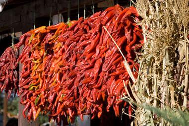 red chiles in Albuquerque