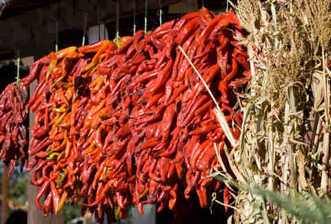 red chiles in Albuquerque