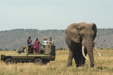A Maasai tour guide on the Serengeti