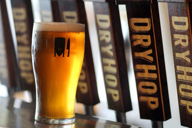 Shark Meets Hipster at Dryhop Brewers in Lakeview