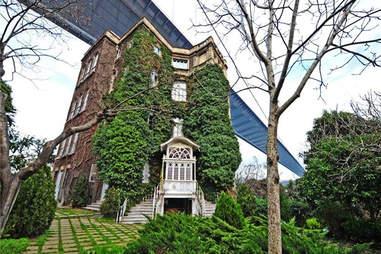Ivy, Mansion, Garden