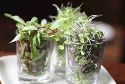 Microgreen flight at Bluestem Bar & Table in Minneapolis