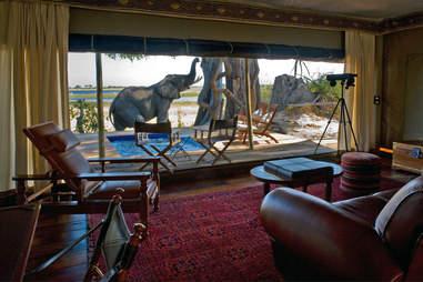 Extraordinary Journeys Million Dollar Safari