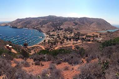 American Conservation Experience Volunteer Vacations, Catalina Island