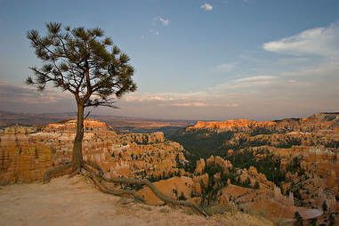 American Conservation Experience Volunteer Vacations, Bryce Canyon