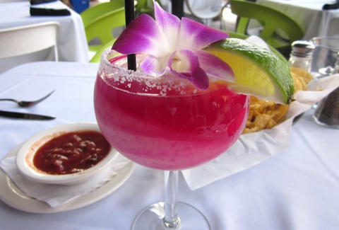 Prickly Pear Margarita at Vivo