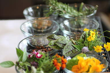 Aromatics at Marin Restaurant & Bar in the Twin Cities.
