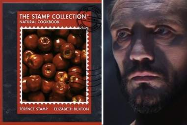 The Terence Stamp cookbook.
