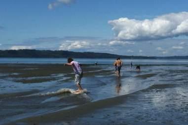 Dash Point Beach Seattle