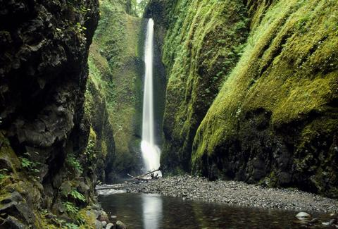 oneonta gorge columbia oregon
