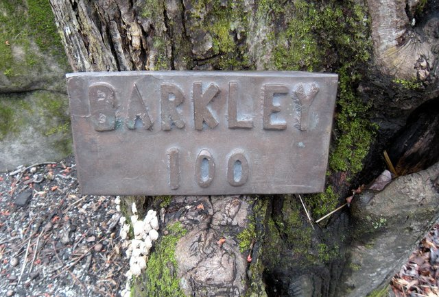 The Barkley Marathon... the most insanely difficult race in the world