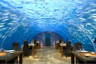 Ithaa Undersea Restaurant, The Maldives