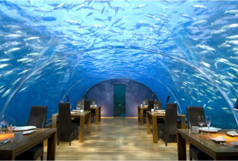 Ithaa Undersea Restaurant, The Maldives