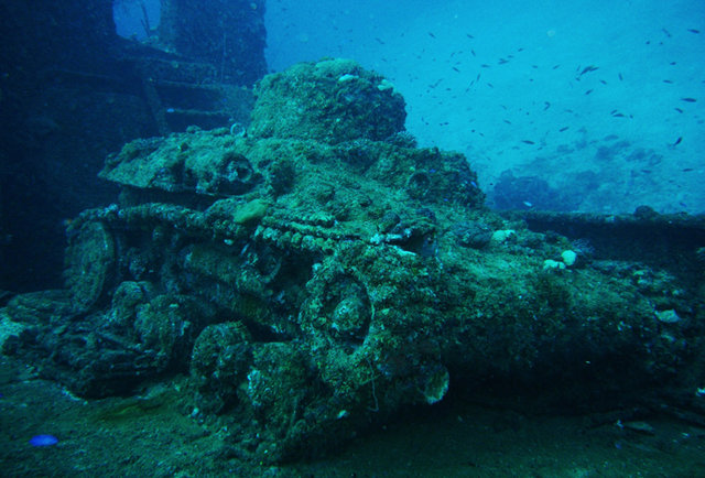 under the sea - underwater restaurant  sculpture park and other cool things