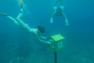 Underwater Post Office, Vanuatu