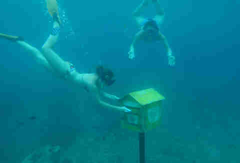 Underwater Post Office, Vanuatu
