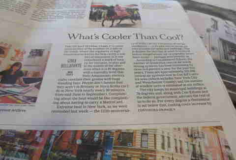The New York Times Metropolitan Section