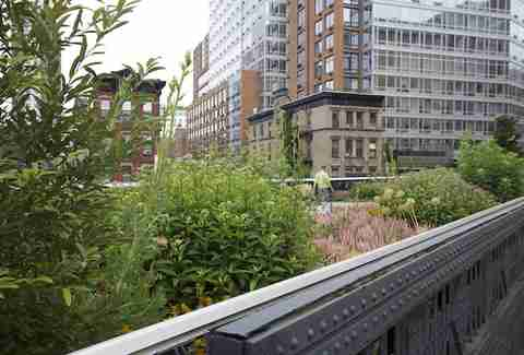 The High Line -- NYC