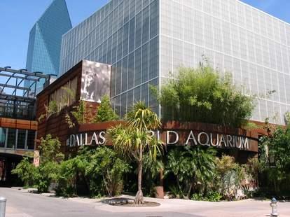 Dallas World Aquarium entrance