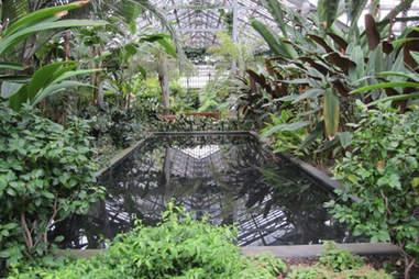 garfield conservatory
