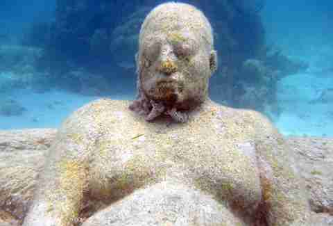 artificial coral reef statue