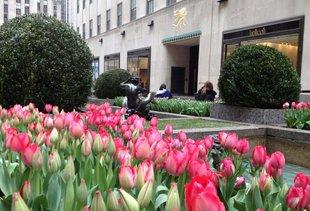 Spa Castle Premier 57 A New York Ny Venue