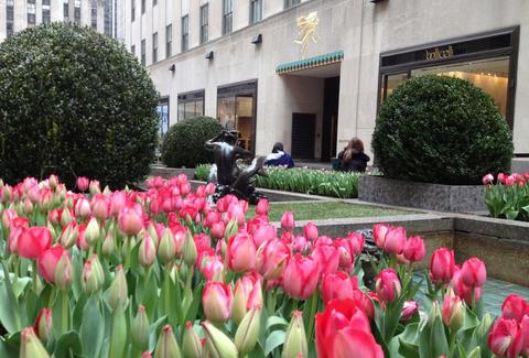 Rockefeller Center -- NYC