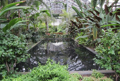 garfield conservatory chicago