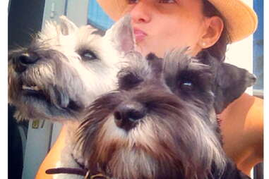 Max and Mort, dog of the Hamptons