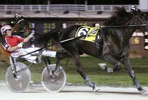 harness racing - pompano