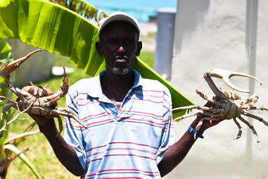 Man holding crabs
