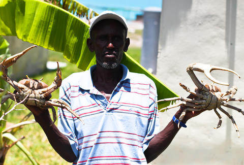 Man holding crabs