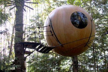 Free Spirit Sphere in the woods