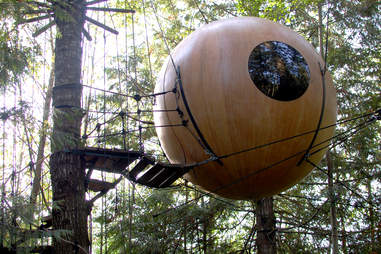 Free Spirit Sphere in the woods