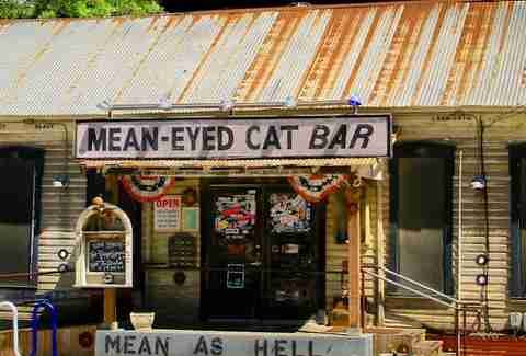 Mean-Eyed Cat exterior
