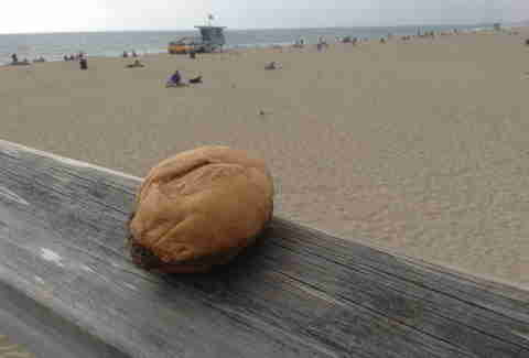 Burger at the beach