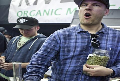 My 420 Tours marijuana tours of Colorado