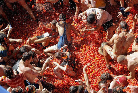 Giant tomato fight