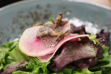 crickets on a salad