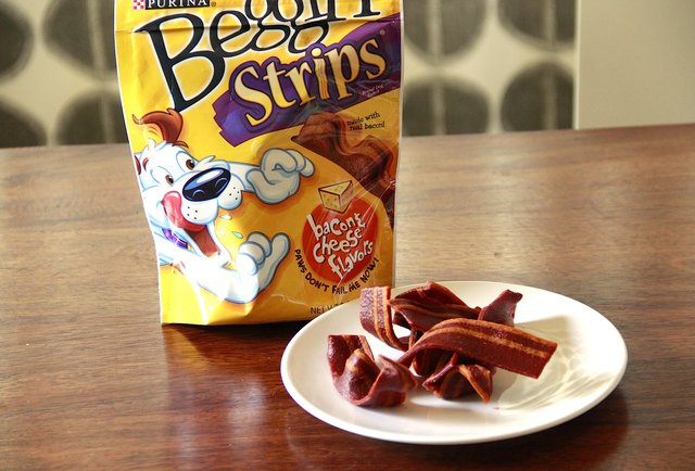 Our editor and his puppy taste-test dog treats