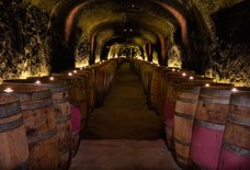 Del Dotto Winery & Caves