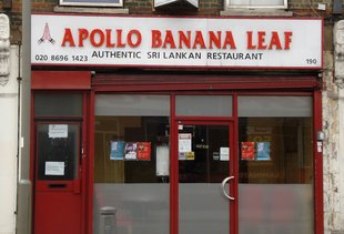 Apollo Banana Leaf