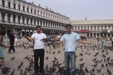 8 reasons jail abroad Pigeon