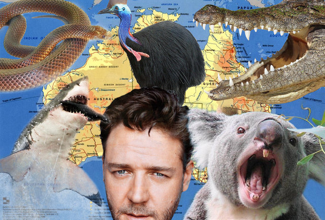 Everything in Australia that\'s trying to kill you