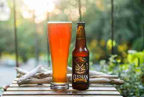 Elysian Brewing's Night Owl Pumpkin Ale