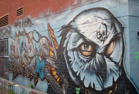 Owl painted in Graffiti Alley