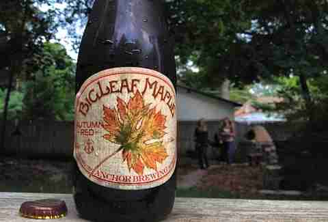 Anchor Brewing Bigleaf Autumn Maple Red Ale