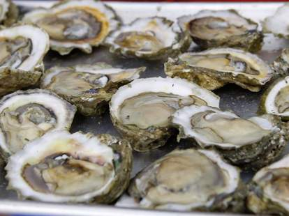 Numerous oysters