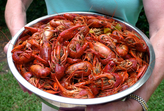New orleans food best places to eat jambalaya pralines for Authentic new orleans cuisine